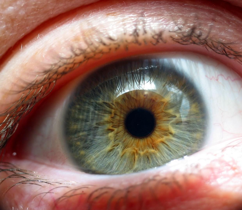 iris_blue_eye_cose-up